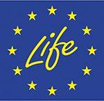 life-programme-flag